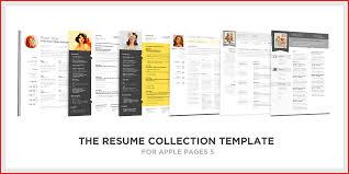 pro cv template fresh apple cv template robinson removal company