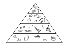 Suggested For Health Food Pyramid Coloring Pages Download Print