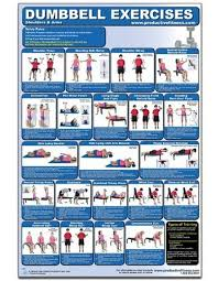 Dumbbell Exercises For Men Chart Free Download Dumbbell Exercises Shoulders Arms Laminated