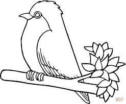 Small Picture Robin bird coloring page Free Printable Coloring Pages