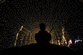 Snug Harbor Light Festival 10 Things You Must See At The Nyc Winter Lantern Festival On