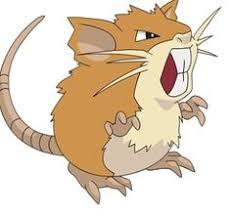 Rattata Evolution Chart 14 Best Normal Type Pokemon Images Type Pokemon Pokemon