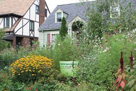 Front Yard Garden Designs Delectable Tips For An Organic Yard GreenCityBlueLake Sustainability In