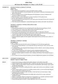 Agile Product Owner Resume Examples Technical Product Owner Resume Samples Velvet Jobs 3