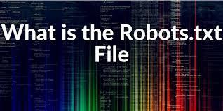 robots txt file definition exles