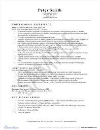 New York Life Insurance Agent Resume Resume Resume Examples