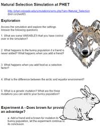 furthermore Natural Selection Worksheet Free Worksheets Library   Download and in addition Evolution and Natural Selection as well  besides Evolution By Natural Selection Worksheet Worksheet  Evolution moreover Origins of Life  Natural Selection   Evolution   wilcoxbiology together with  likewise  also Quiz   Worksheet   Charles Darwin   Natural Selection   Study besides Natural Selection   Evolution 4 Version Quiz   Natural selection furthermore mirandasbiologyblog   A great WordPress   site. on evolution and natural selection worksheet
