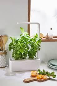 4 garden starter kit