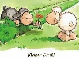 Guten Morgen Sonntag Sprüche Bilder Und Sprüche Für Whatsapp Und