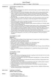 Avp Internal Audit Resume Samples Velvet Jobs
