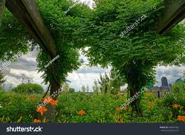 flowers of battery park gardens series
