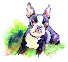 boston terrier puppy painting by christy freeman boston terrier puppy fine art prints and posters