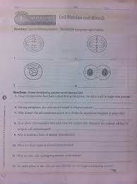 Cell division answer key vocabulary: Cells Mitosis Reinforcement Pmcs Science 3