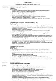 Being an underwriting supervisor i analyzes various rate plans utilizing a company's claims history to determine the appropriate rate plan and benefits costs. Underwriting Assistant Resume Samples Velvet Jobs