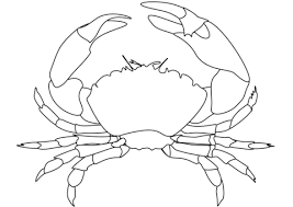 Small Picture Crab coloring page Free Printable Coloring Pages