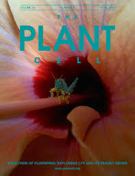 Charles Darwin And The Origins Of Plant Evolutionary Developmental