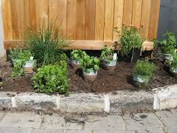 Small Picture Easy Tips in Making an Herb Garden Design Herb Garden Design