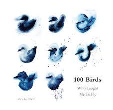 100 Birds by Alex Hubbell   Blurb Books Canada