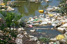 How To Make Chart On Pollution Plastic Pollution Sources Effects Britannica