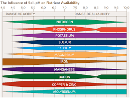 Vegetable Ph Chart How To Test Your Garden Soils Ph And Fix It For Great Veggies
