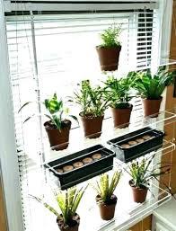 indoor kitchen garden herb garden indoor window garden box indoor herb garden window box window box indoor kitchen garden wine bottle holder herb