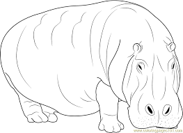 Small Picture Adult Hippopotamus Coloring Page Free Hippopotamus Coloring
