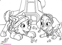 Paw Patrol Skye And Everest Coloring Page Rainbow Playhouse