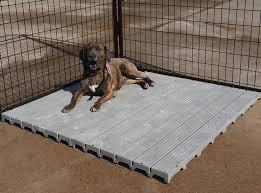 dog kennel flooring kennel decking raised flooring system dog run flooring