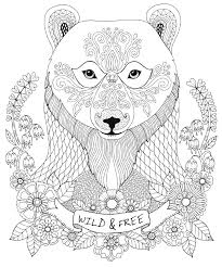 Amazon.com: New Guide to Coloring for Crafts, Adult Coloring Books ...
