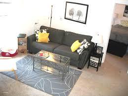 diy apartment decorating ideas imanada blog for amusing college and guys interior design furniture elegant