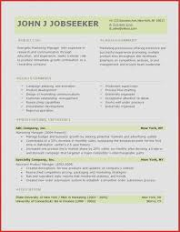 Professional Resume Template Inspirational Best Free Professional ...