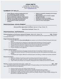 General Professional Summary For Resume 74 Elegant Collection Of Resume Professional Summary Examples