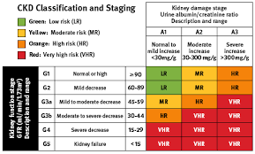 Ckd Classification Chart Chronic Kidney Disease Classification Staging Chronic