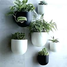 hanging plant shelf wall hangers indoor mounted