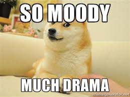 so moody much drama - so doge | Meme Generator via Relatably.com