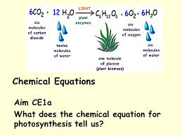 aim ce1a what does the chemical equation for photosynthesis tell us