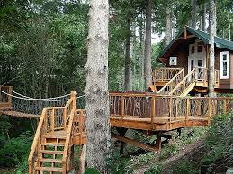 simple kids tree houses. Tree House Designs And Plans For Kids Fresh Super Easy Simple Treehouse Houses
