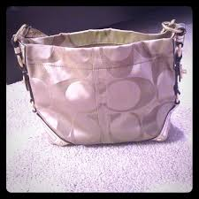 Coach signature medium Carly hobo bag