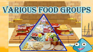 Food Pyramid Project Healthy Food Chart For School Project Pyramid The 5