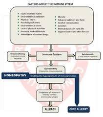 15 best Standardized Homeopathic Medicine images on Pinterest ...