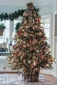 Balsam Fir Christmas Tree-2