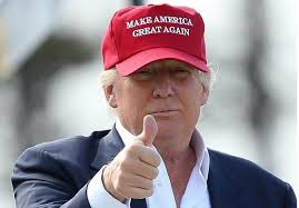 Image result for trump getting things done