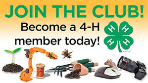 Image result for join a 4-H club