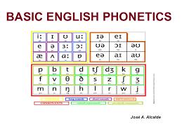 International phonetic alphabet symbols for the vowels of american english. Basic English Phonetics