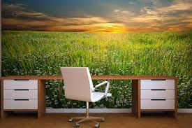 office wallpaper ideas. Home Office Wallpaper Interior Design Nature Wall Murals For Beautify The . Ideas
