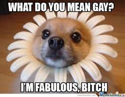 Feeling Fabulous Memes. Best Collection of Funny Feeling Fabulous ... via Relatably.com