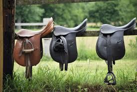 """Résultat de recherche d'images pour """"équitation"""""""