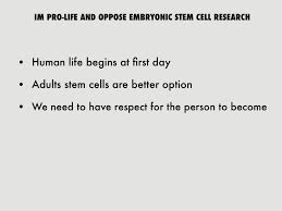 stem cell research outline stem cell outline paper research paper essays24 com