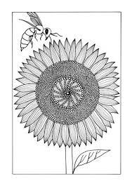 16 Floral Coloring Pages Favecraftscom