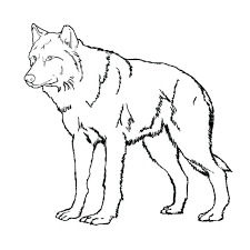 Wolf Coloring Pages To Print Wolf Coloring Page Wolf Coloring Pages